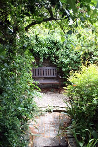 The bench at the end of the garden