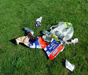 Rubbish heap left in the recreation ground