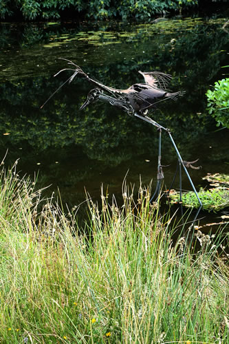 A heron? Landing or taking off...