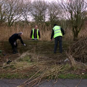 FREE* Green Skills Workshops at Carymoor in February & March