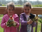 Easter Fun at Carymoor Environmental Centre