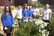 Green Growth at Wincanton Primary School