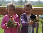 Children at Carymoor Environment Centre