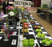 Wincanton and District Gardeners' Annual Show - Coming Soon