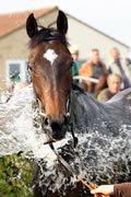 Increased Prize Funds at Wincanton Reaps Rewards
