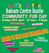 Join in the Balsam Bustle at its Community Fun Day