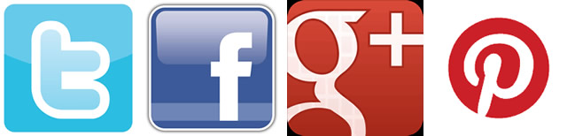 Twitter, Facebook, Google+ and Pinterest social network icons