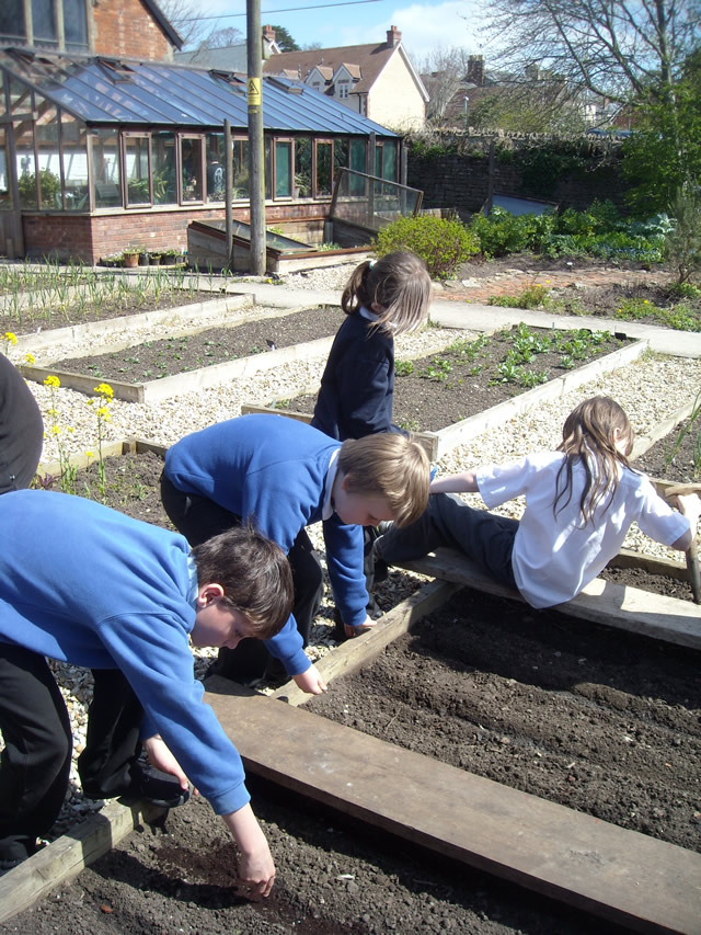 Wincanton Primary School pupils spend time at the Growing Space, Balsam Centre