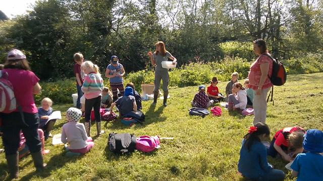Children from Horsington Primary School identifying species collected from the River Cale