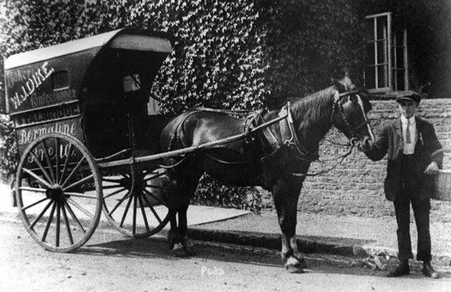 The horse and cart used in the 1900s to deliver groceries around the village of Stalbridge.
