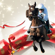 Christmas Party Day at Wincanton Racecourse