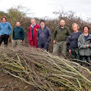 Free Green Skills Hedgelaying Course at Carymoor