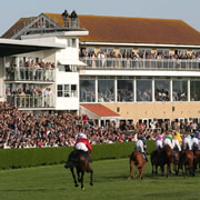 Somerset's Ultimate Christmas Experience - Wincanton Races on Boxing Day