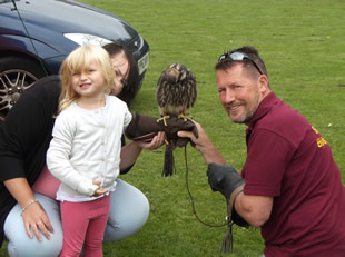 Hawk handling at Wincanton Play Day 11th August 2016