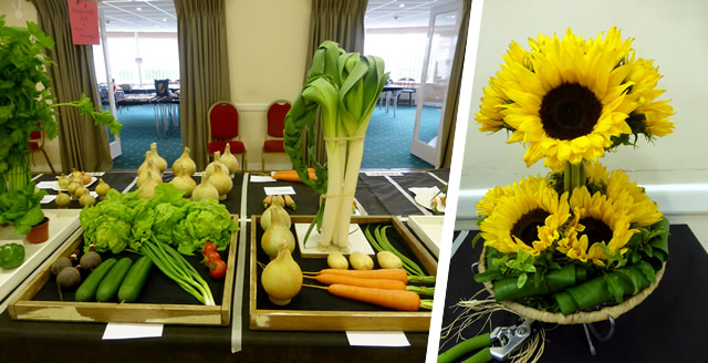 Vegetables and sunflowers at Wincanton Flower Show 2016
