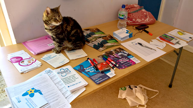 This cat seemed to have organised all the reading material by the time I'd arrived.
