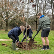 Wincanton pupils helped plant new trees at Cale Park