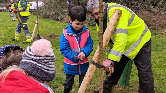 A pupil from Our Lady of Mount Carmel Primary School hammering in a nail to fasten the stake strap