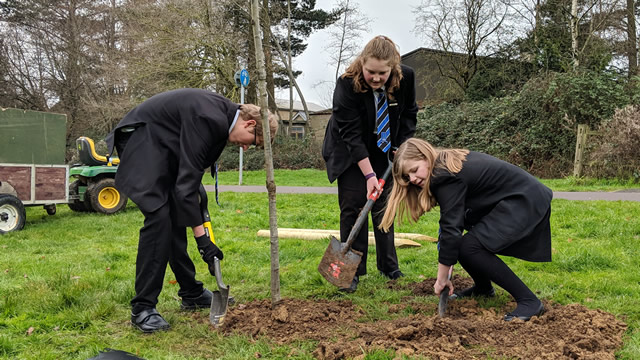 Students from King Arthur's School planting a tree at Wincanton's Cale Park recreation ground