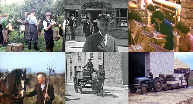 Stills from Windrose Rural Media Trust's local footage