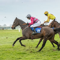Racing returns to Wincanton in mere weeks