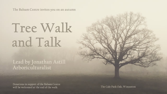 The Balsam Centre invites you on an autumn tree walk and talk, lead by Jonathan Astill, arboriculturalist
