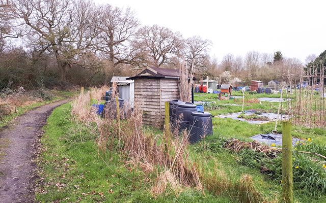 The allotments at Wincanton Sports Ground
