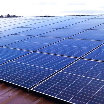 Wyke Farms has increased its renewable energy production with a new Wincanton solar array