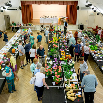 Wincanton Flower Show 2020 is cancelled