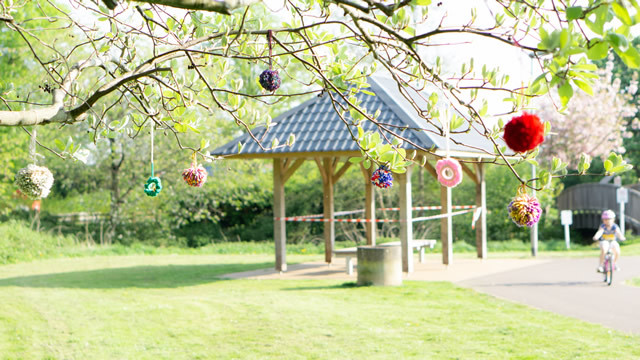 Knitted pom poms hanging from a tree at Cale Park, Wincanton